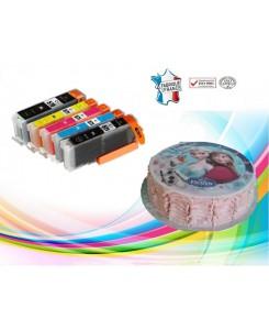 Cartouches d'encre alimentaire PGI570/CLI571