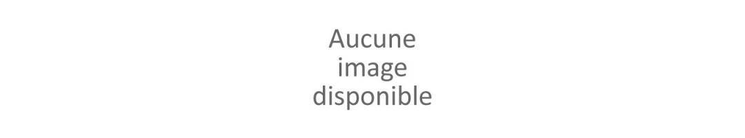 FLACONS D'ENCRE HP/EPSON/CANON/BROTHER